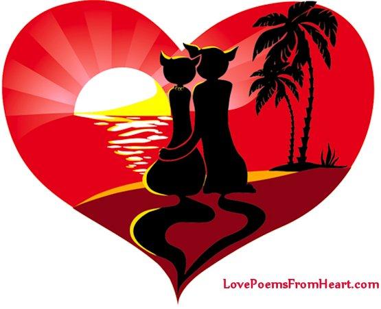 Love kittens in the heart